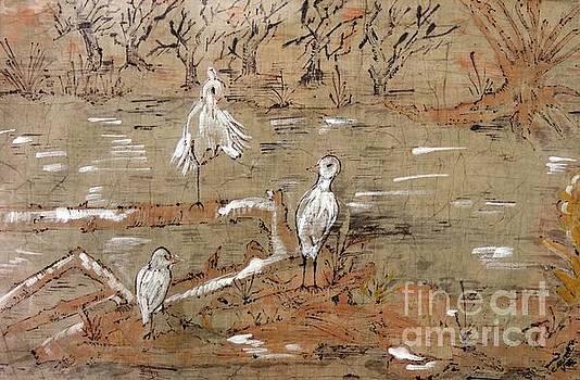 Caroline Street - Egrets on Driftwood