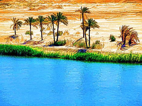 Dennis Cox - Egypt Oasis