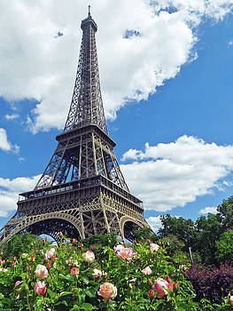 Eiffel Tower and Flowers by Ann Sullivan
