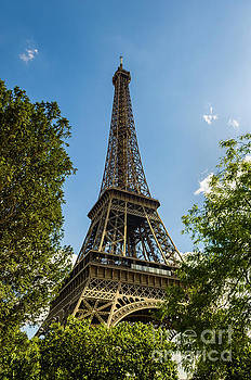 Eiffel Tower Through Trees by Paul Warburton