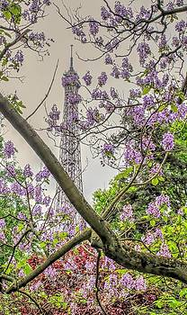 Eiffel tower with lilacs by Maria Preibsch
