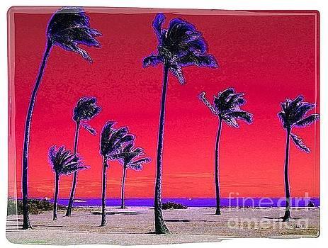Eight Palms by Dorlea Ho