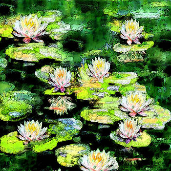 Eight #Waterlilies by Michele Avanti