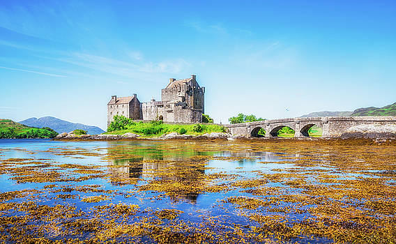 Eilean Donan in Summer by Roy McPeak