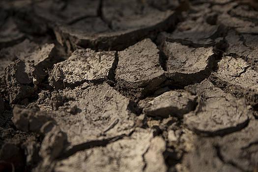 Eisenhower State Park Dry Creekbed by Jennifer Zandstra