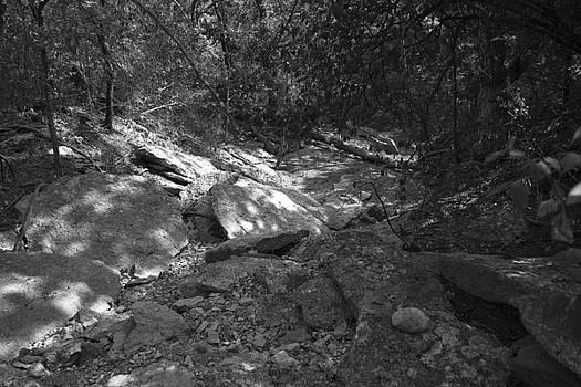 Eisenhower State Park Rocks by Jennifer Zandstra