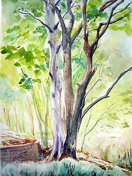 Ekant park 10 by Prabhu  Dhok