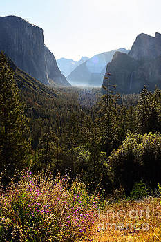 El Capitan and Yosemite Valley by MaryJane Armstrong