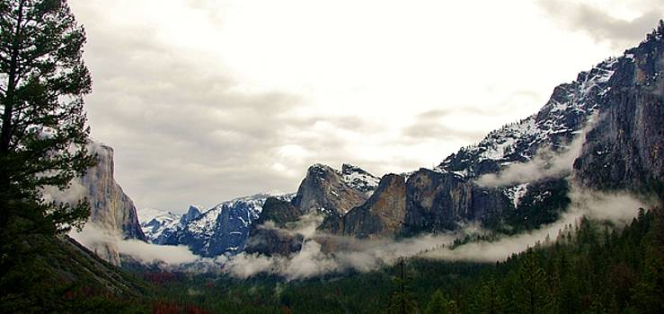 El Capitan From Artist Point B by Phyllis Spoor