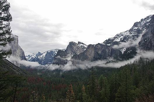 El Capitan From Artist Point E by Phyllis Spoor