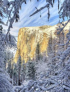 El Capitan Winter Majesty Yosemite National Park by Wayne Moran