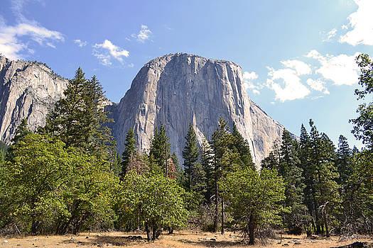 El Capitan- Yosemite by Atul Daimari