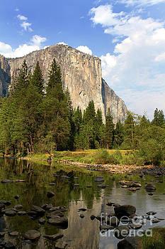 El Capitan Yosemite National Park California by Steven Frame