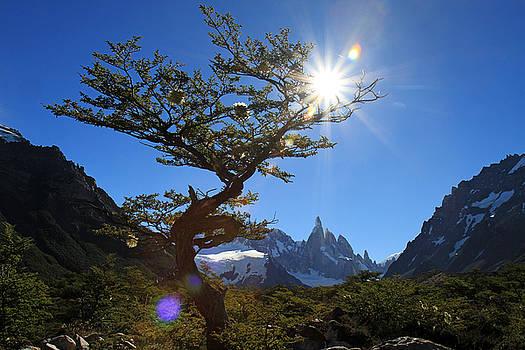 El Chalten Argentina by Kurt Williams