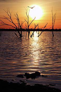 El Dorado Lake Morning by Christopher McKenzie
