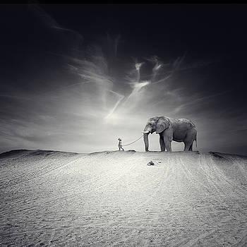 El gran viaje by Luis  Beltran