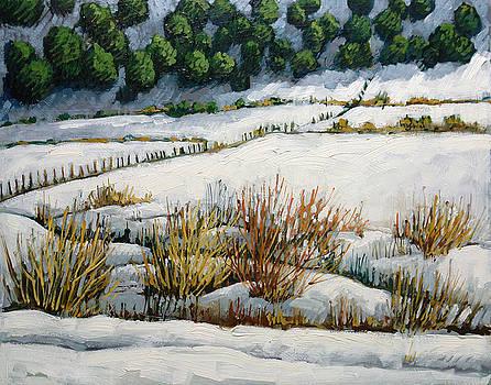 El Llano by Donna Clair