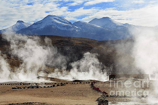El Tatio Geysers in the Andes Mountains in Antofagasta Chile by Louise Heusinkveld