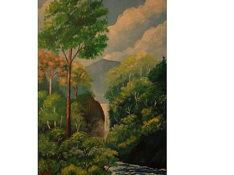 El Viejo waterfall by Jean Pierre Bergoeing