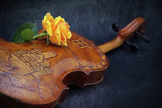 Angela Doelling AD DESIGN Photo and PhotoArt - El violin