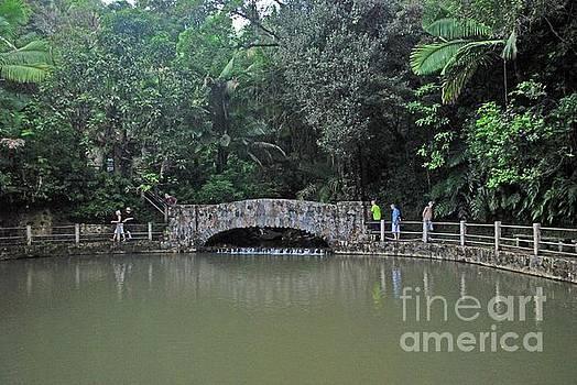 Gary Wonning - El Yunque Bridge