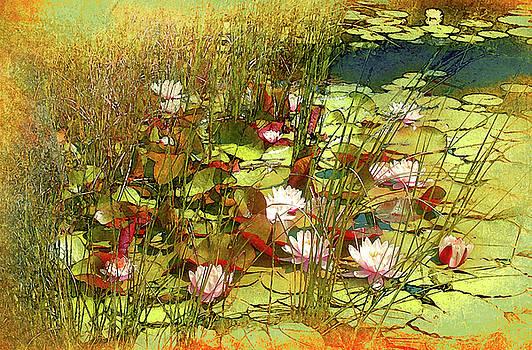 Elandan Gardens Kitsap Washington by Jeff Burgess
