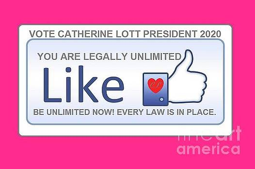 Election 2020 PINK by Catherine Lott