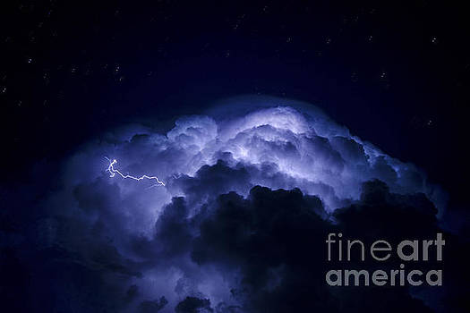 Electric Blues by Ryan Smith