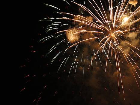 Electric City Fireworks XXII by Daniel Henning