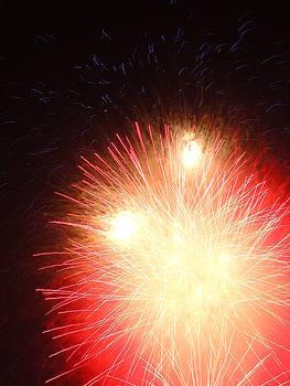 Electric City Fireworks XXVI by Daniel Henning