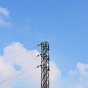 Electric Pylon near Dhone, Andhra Pradesh, India by Iqbal Misentropy