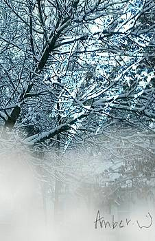 Electric Snow by Amber Waltmann