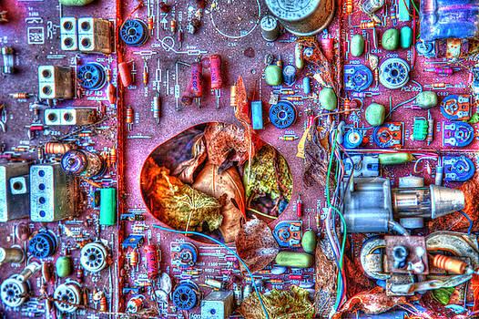 Electronic Nature by Matjaz Preseren