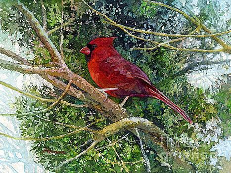 Hailey E Herrera - Elegance in Red