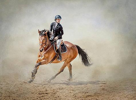 Elegance in the Dust by Debby Herold