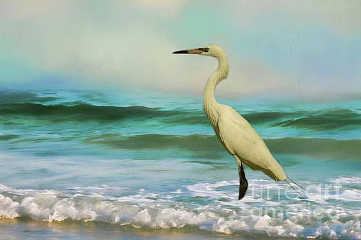 Elegant Egret in the surf by Myrna Bradshaw