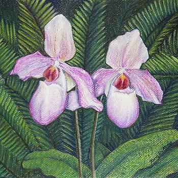 Elegant Orchid Twins by Tara D Kemp