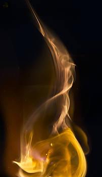Steven Poulton - Elemental
