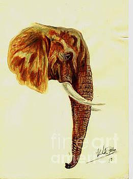Elephant 2 by Peter Kulik