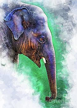 Elephant art by Justyna JBJart