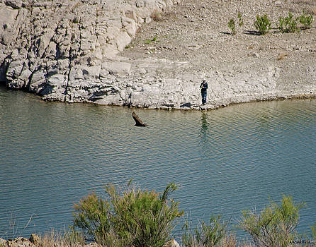 Allen Sheffield - Elephant Butte Lake - Fisherman with Buzzard