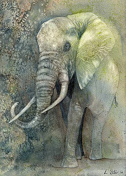 Elephant Grandfather by Laura Star Studio