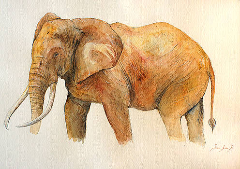 Juan  Bosco - Elephant painting
