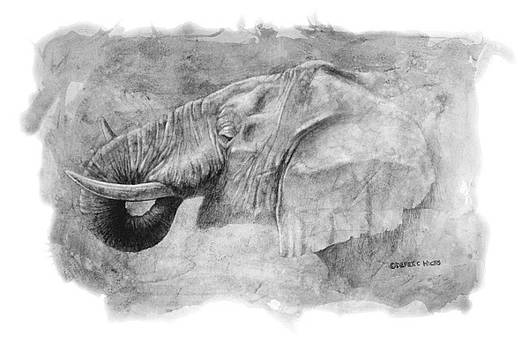 Elephant Portrait by Derek Wicks