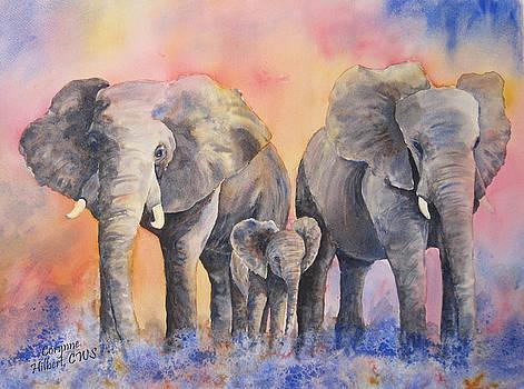 Elephant Trio by Corynne Hilbert