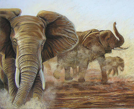 Elephant Walk by Deb LaFogg-Docherty