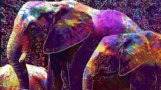 Elephant Wuppertal Zoo  by PixBreak Art