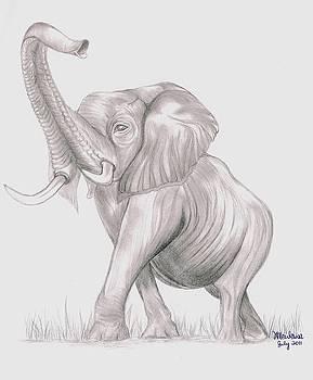 Elephant by Xafira Mendonsa