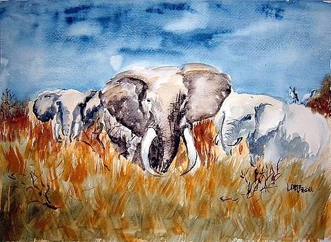 Elephants by Lisa Bruder