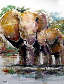 Elephants Love by Bernadette Krupa